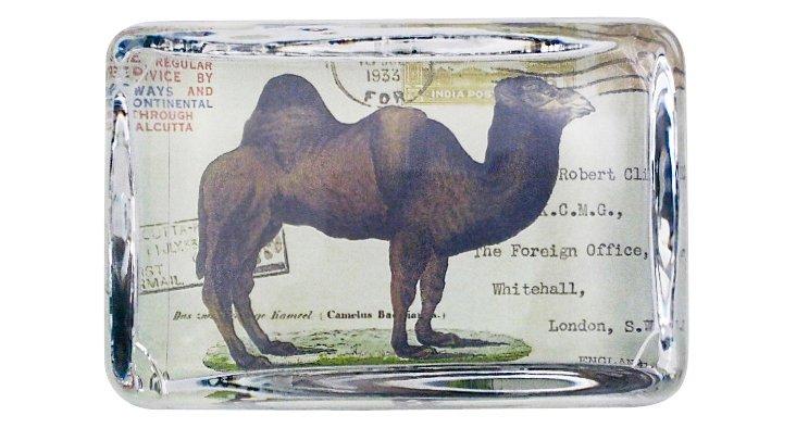 Camel Postcard Paperweight