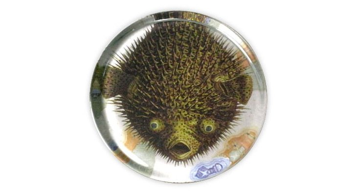 Puffer Fish Paperweight