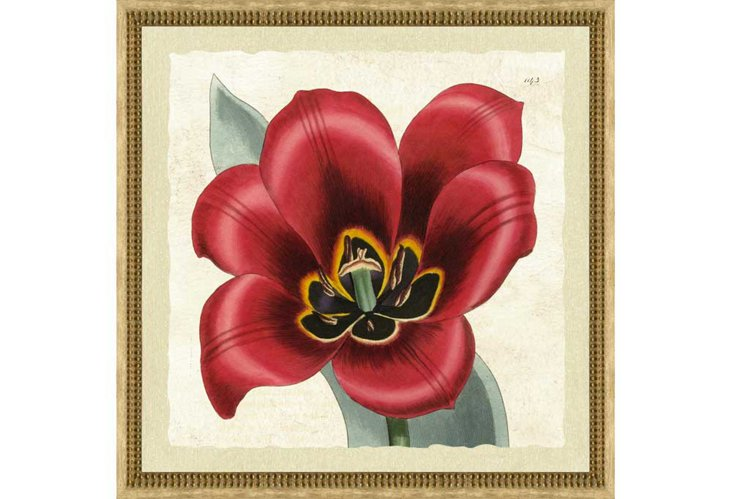 Red Floral Print II, Rustic Cream Frame