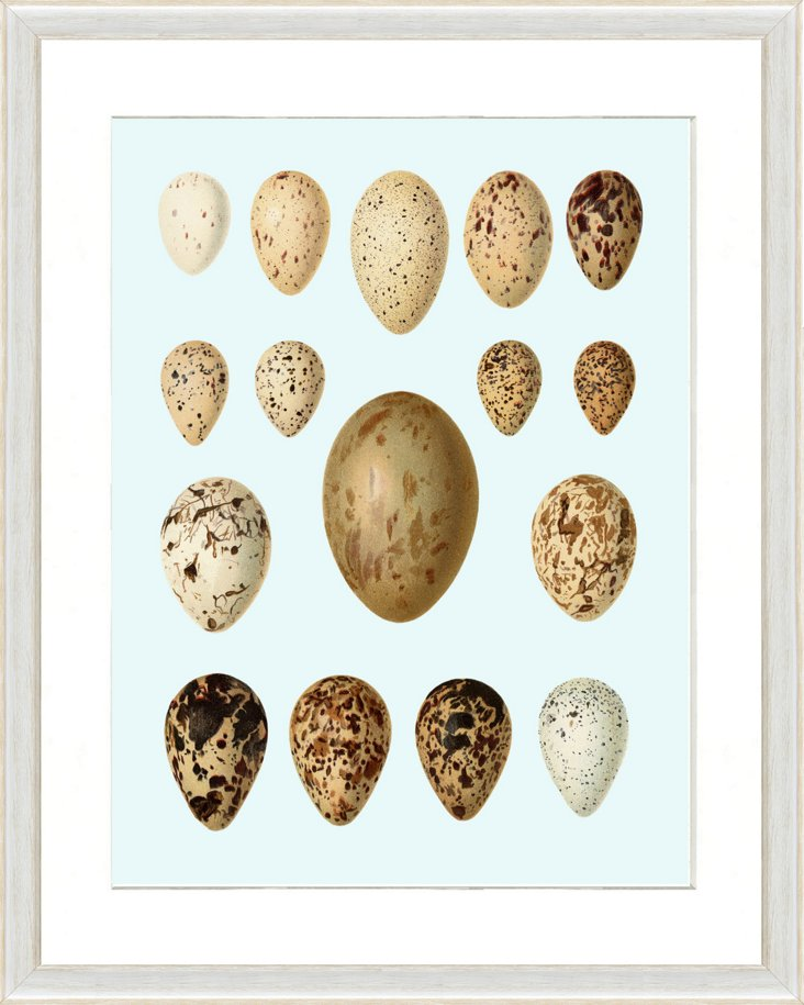 Pale Blue Egg Print I