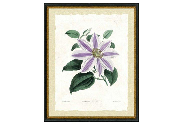 Purple Botanical II, Gold-Lipped