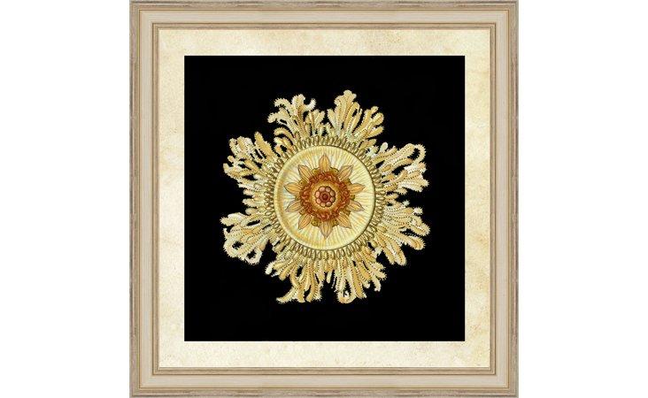 Gold Haeckel Print I
