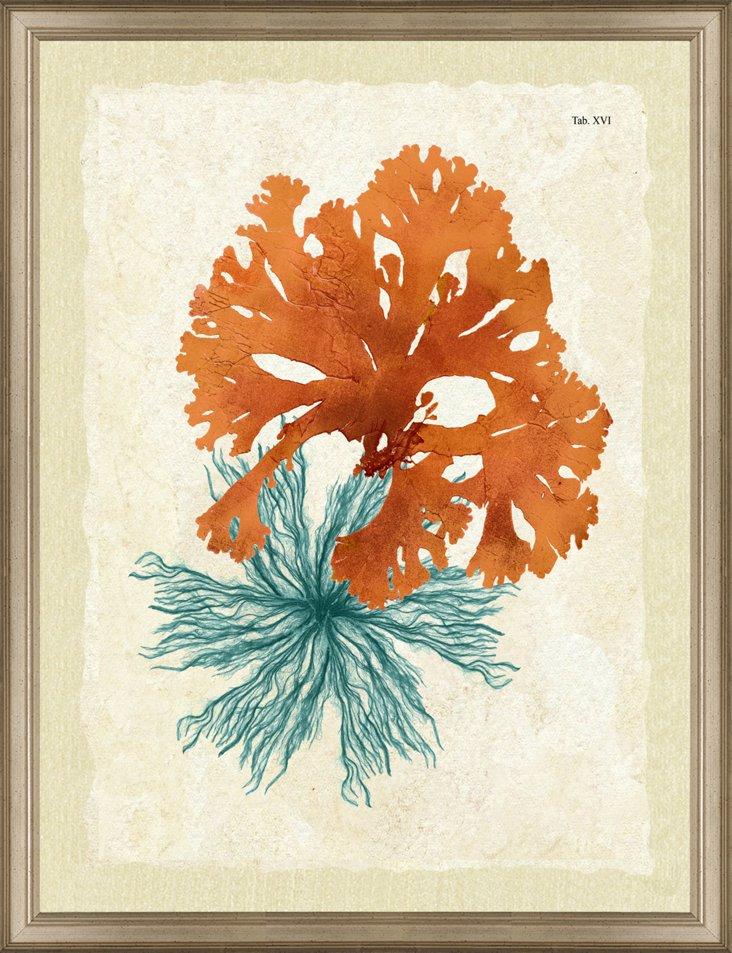 Rustic Framed Teal and Orange Seaweed Pr