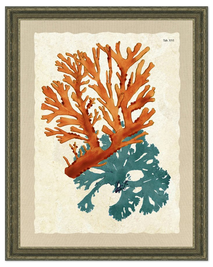 Rustic Teal and Orange Seaweed Print II