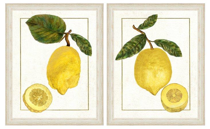 Lemon Diptych