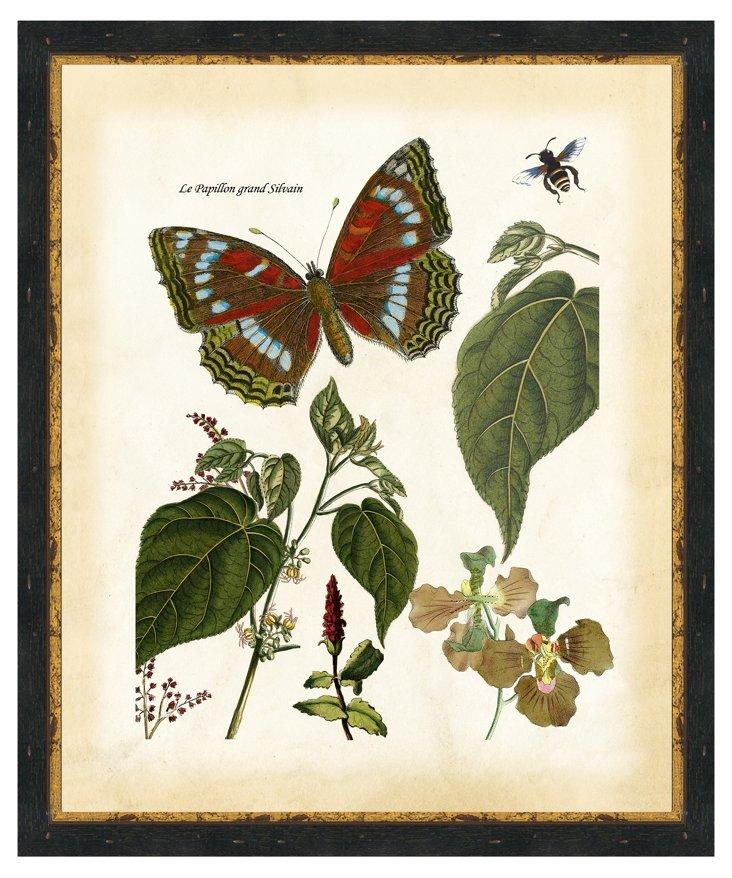 Ebony Wood-Framed Garden Life Print IV