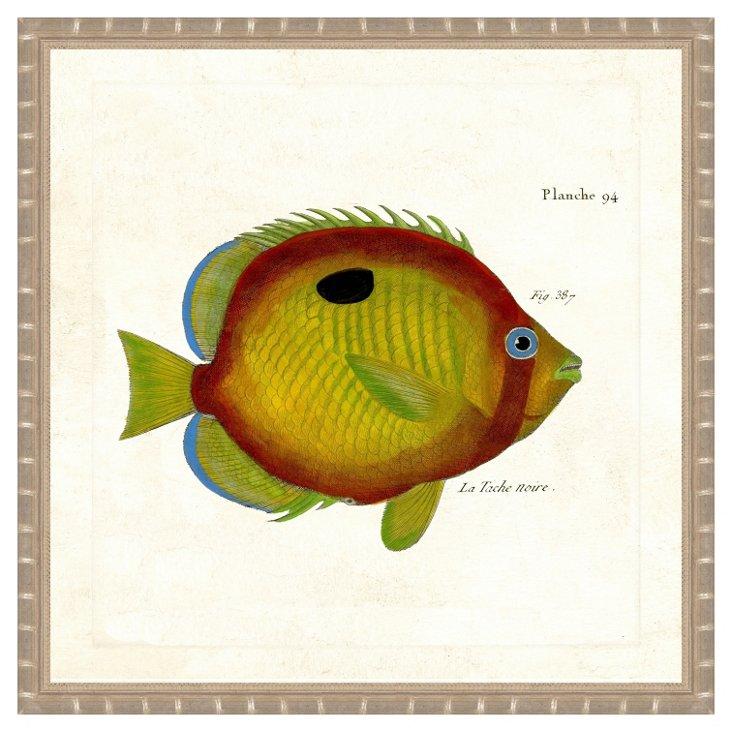 Silver Bamboo Framed Fish Print IV