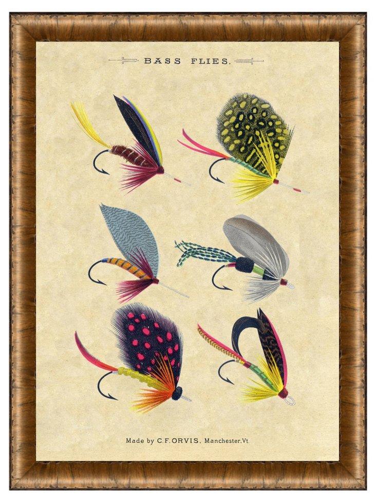 Wood Framed Bass Flies Print II