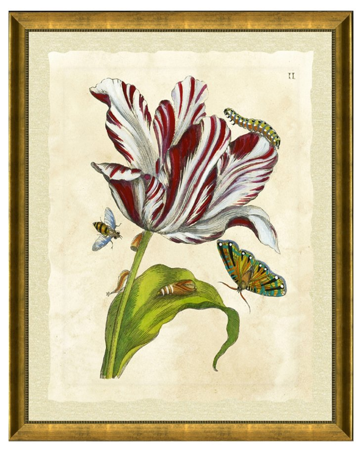 Gold-Framed Floral Insect Print