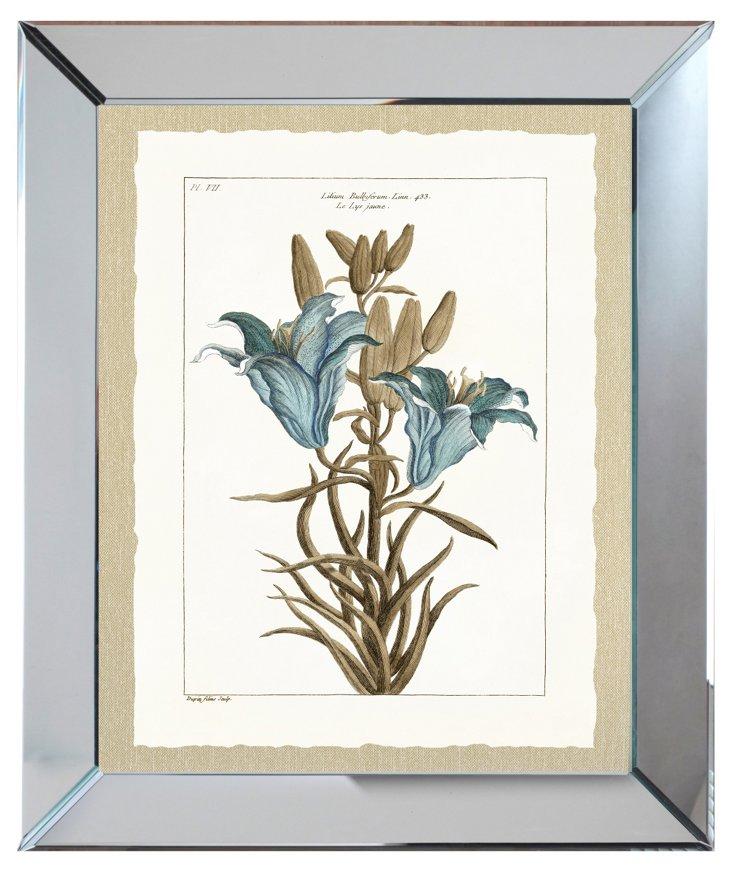 Mirror Framed Blue Botanical Print II