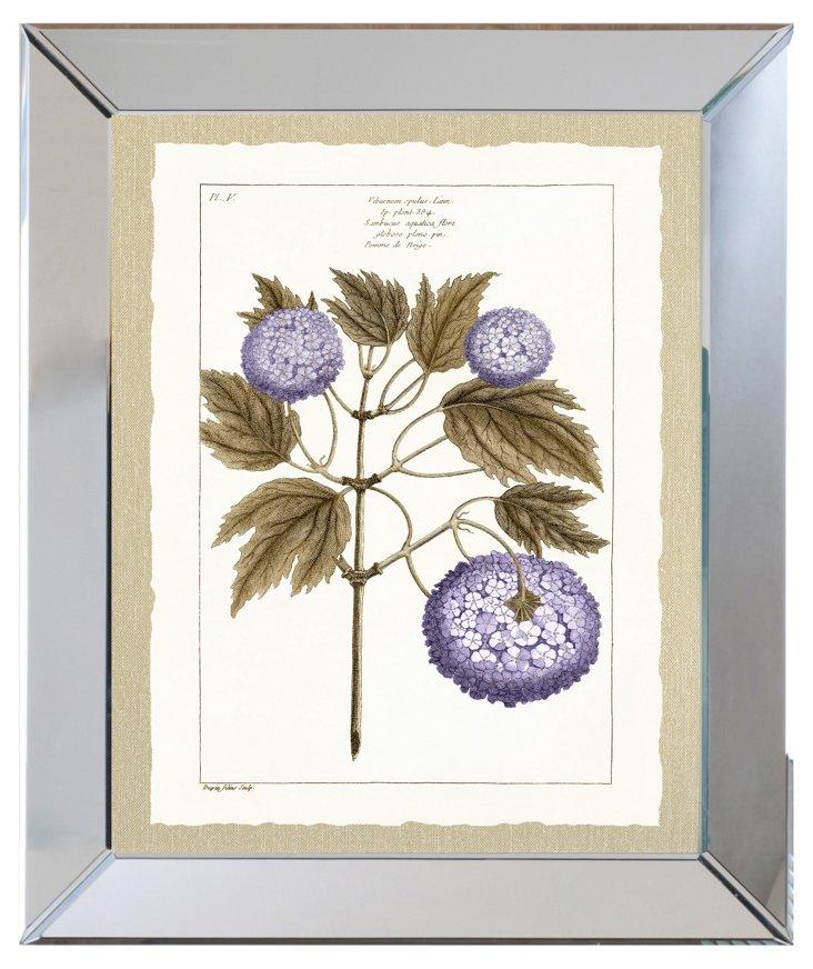 Mirror Framed Purple Botanical Print I