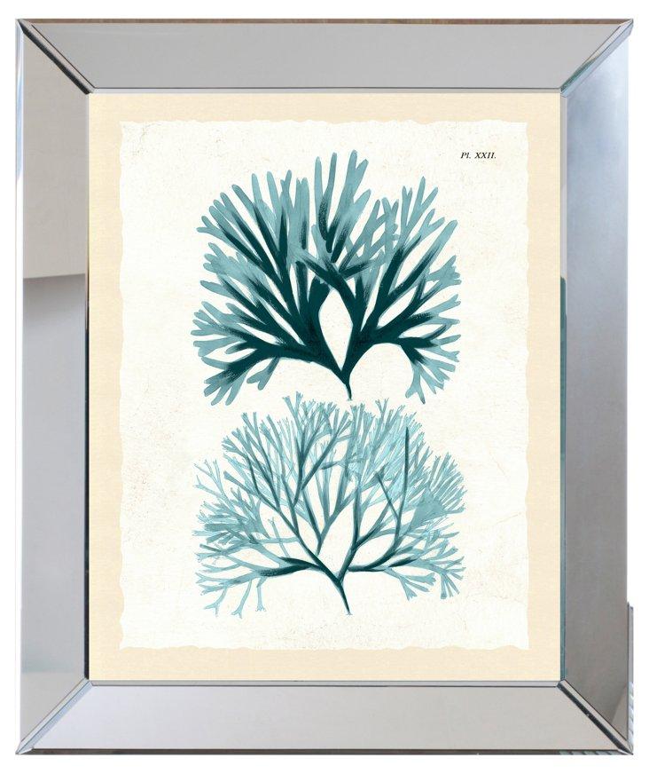 Mirror Framed Teal Seaweed Print I