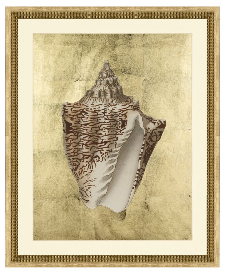 Sepia Shell I with Gold Leaf Background