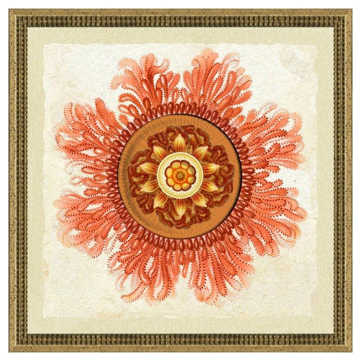 Coral Jelly Fish Print I