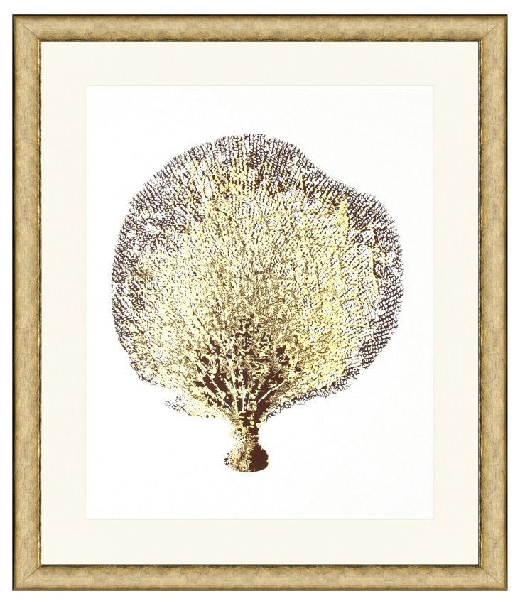 Sea Fan with Gold Details I
