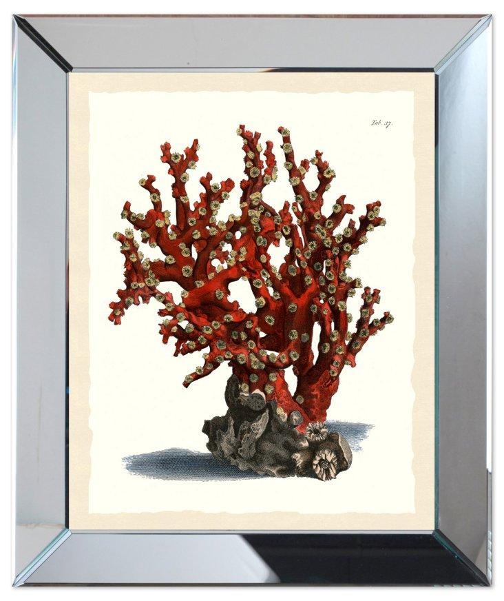 Mirror Framed Red Seaweed Print II