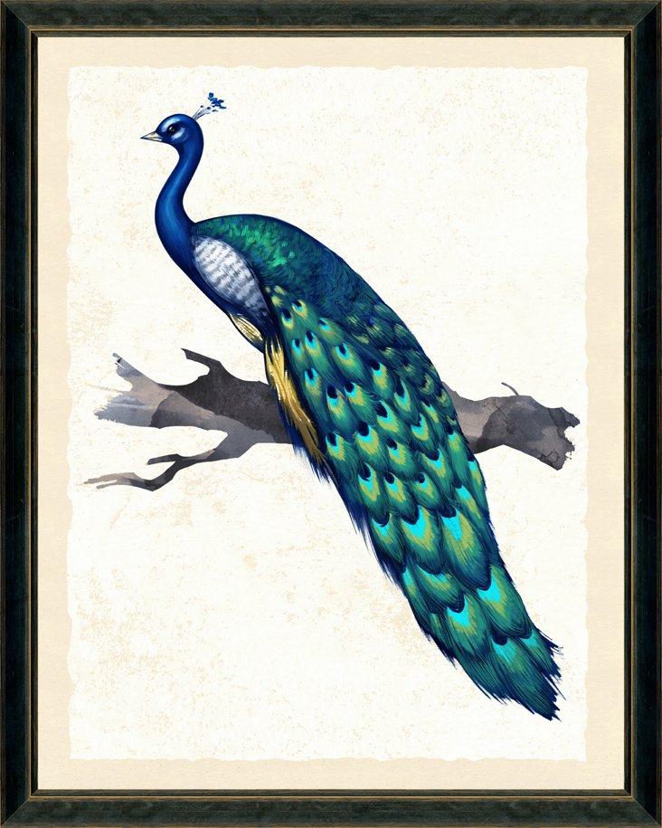 Peacock Print I