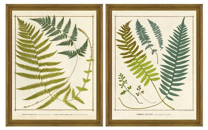 Teal and Green Fern Diptych