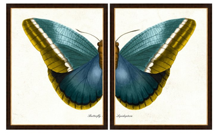 Butterfly Diptych Print
