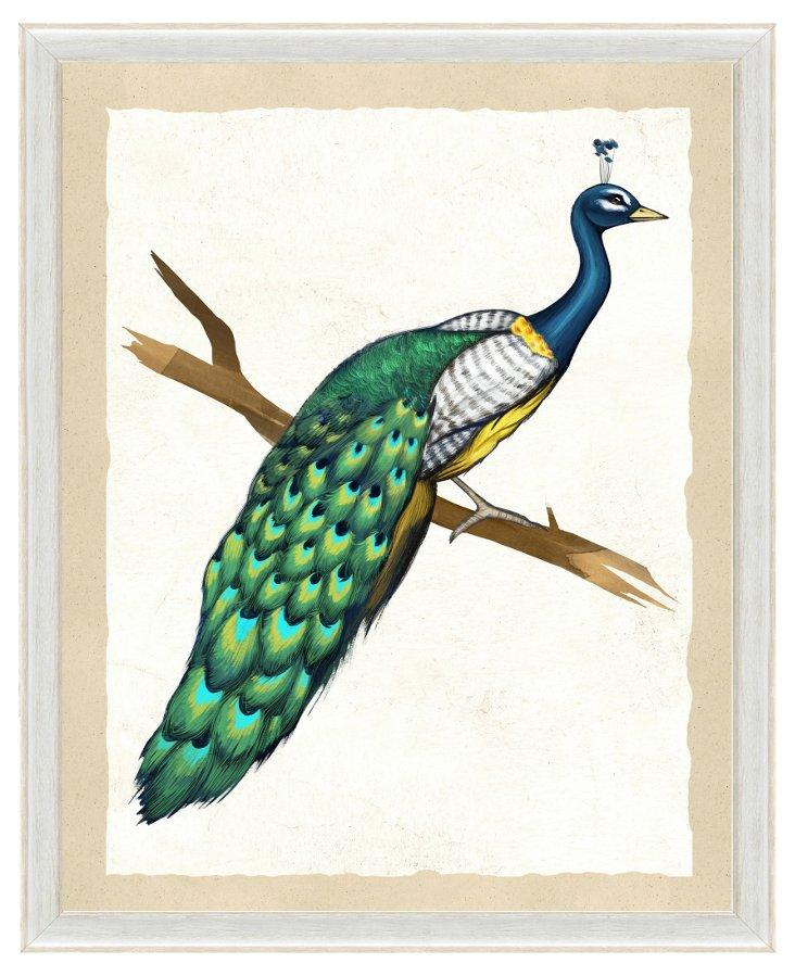 Green Peacock Print I