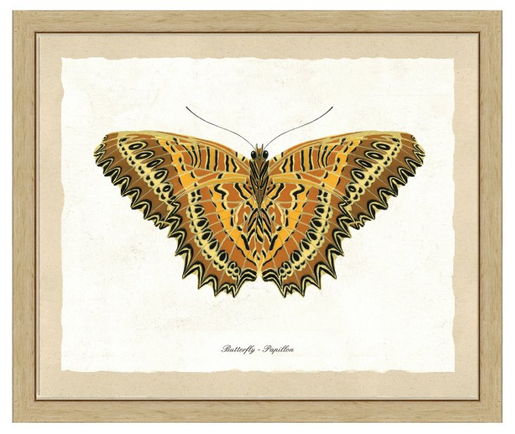 Neutral Butterfly Print I