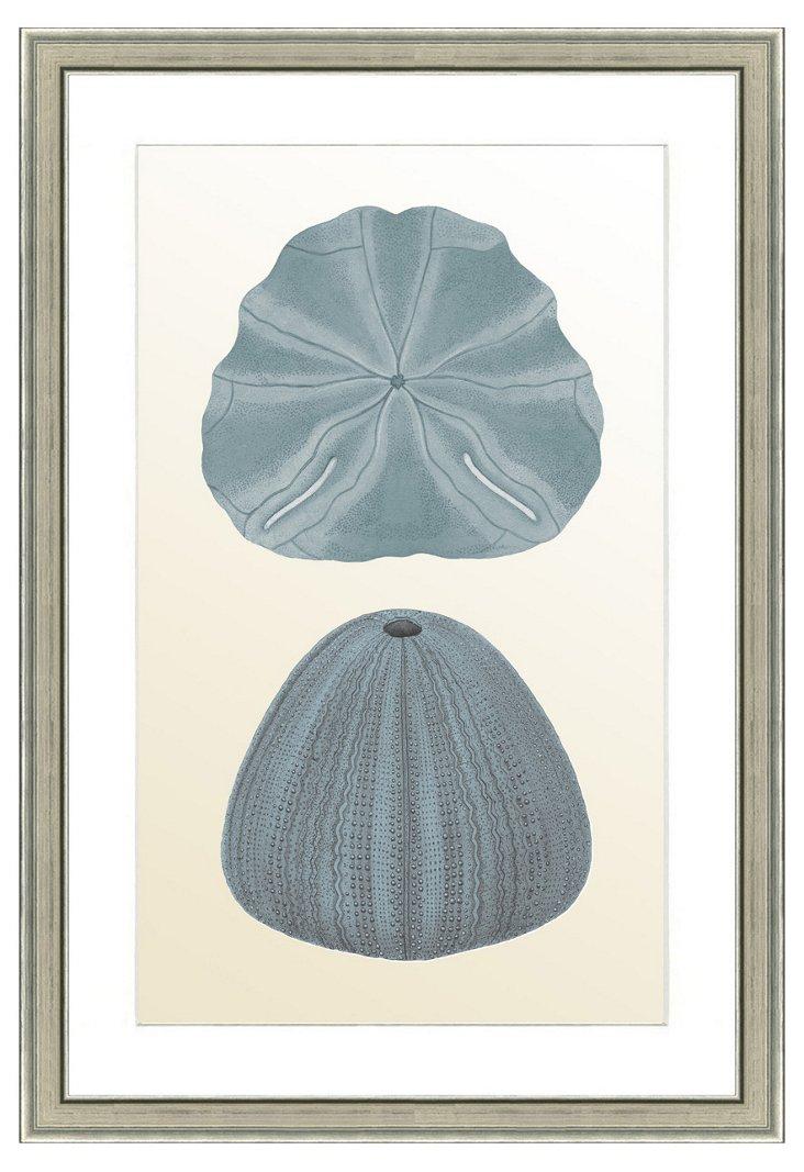 Double Blue Shell Print II