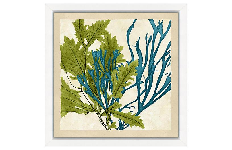 Green and Teal Seaweed Crop I