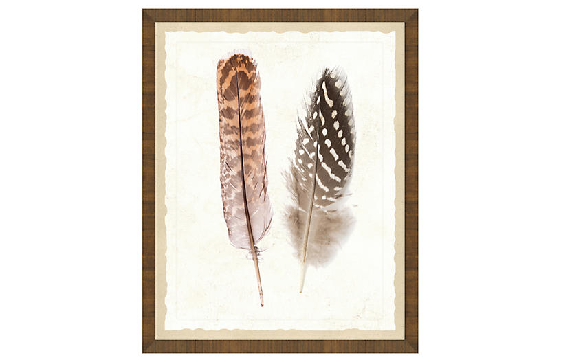Natural Feathers Print I