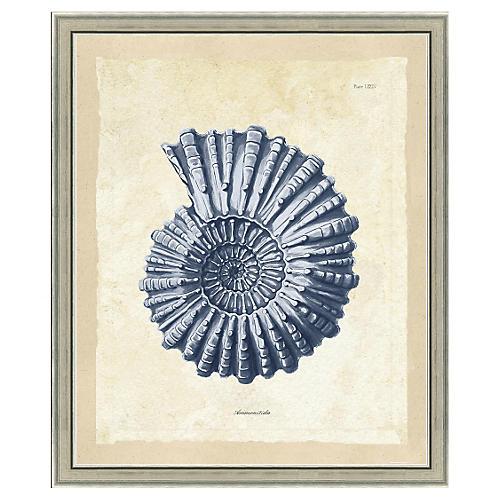 Blue Sea Life Print IV