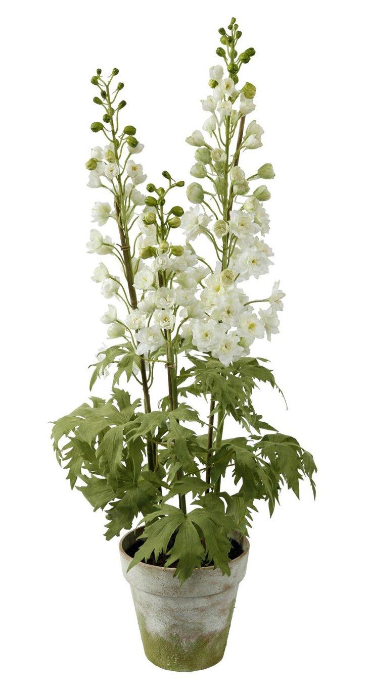 """35"""" Delphiniums in Clay Planter,White"""