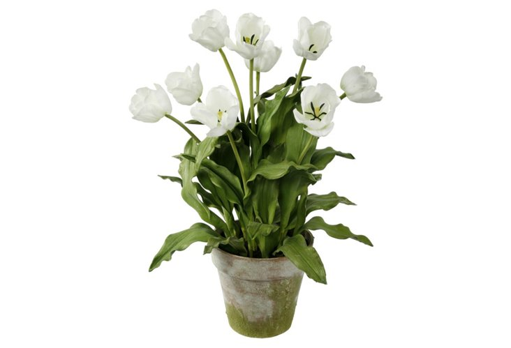 """23"""" Tulips in Clay Pot, Faux"""