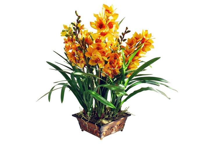 Grand Orchid Planter, Gold