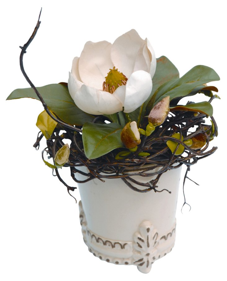 Magnolia in Round Footed Vase, White