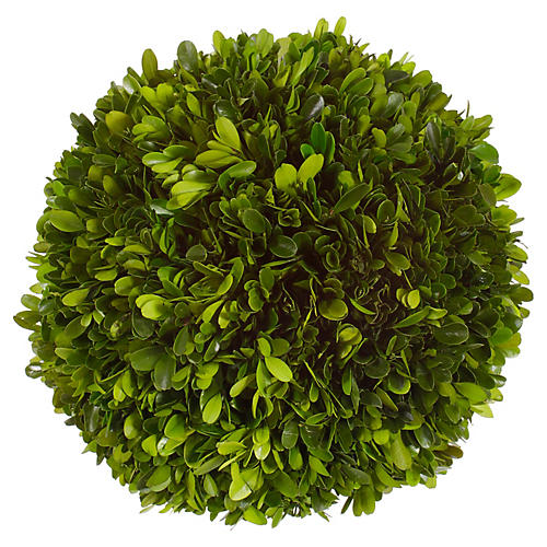 "10"" Boxwood Ball, Dried"