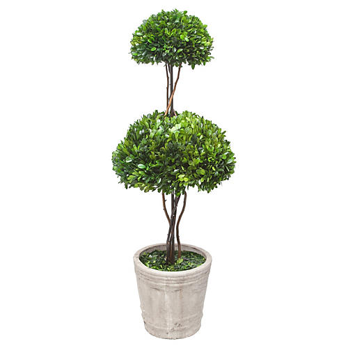 "39"" Mushroom Boxwood Topiary, Faux"