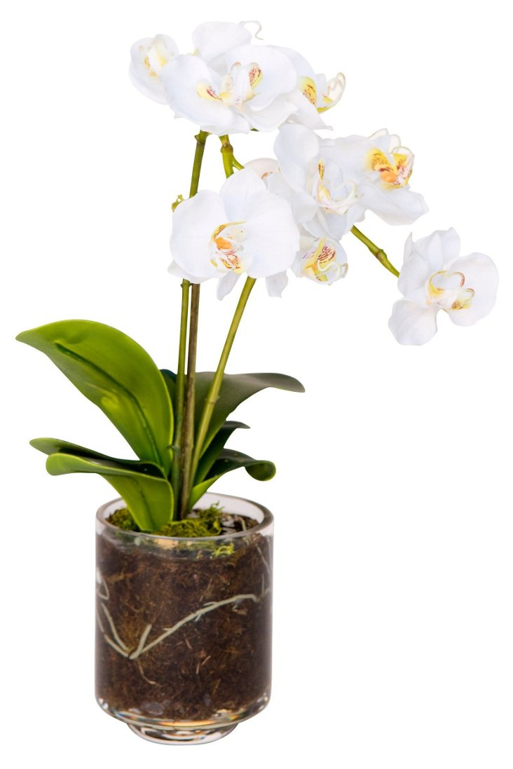"""15"""" Orchid in Vase, Faux"""
