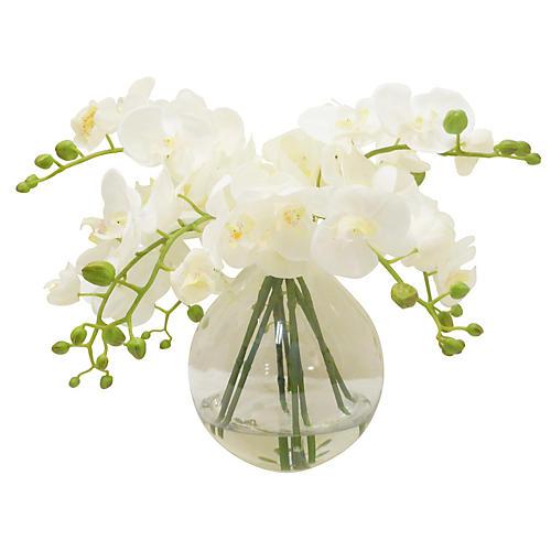 """19"""" Phalaenopsis in Vase, Faux"""