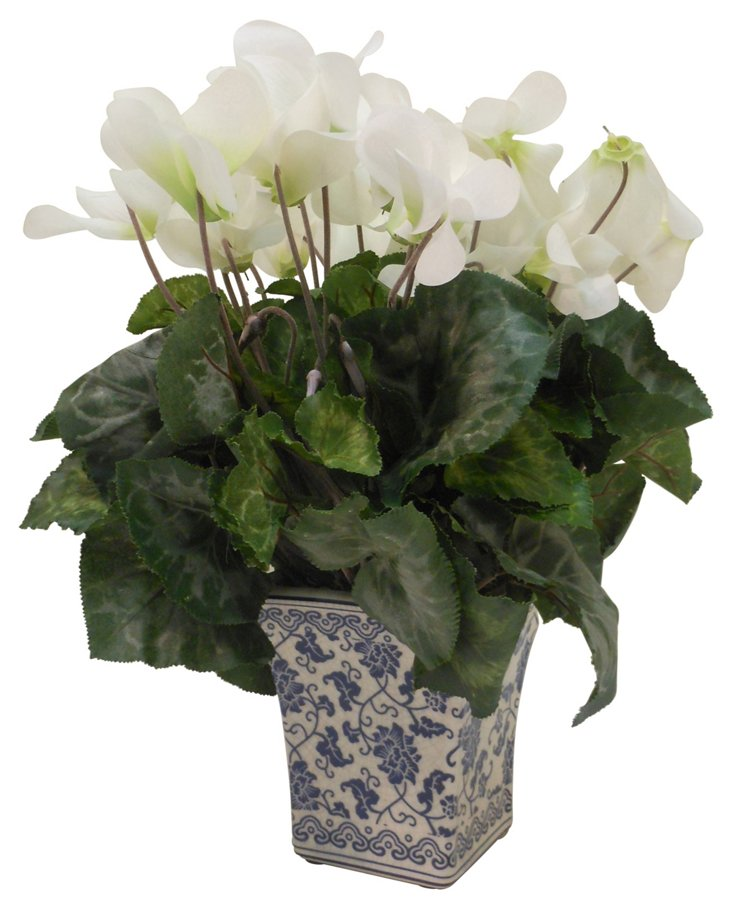 "15"" Cyclamen in Planter, Faux"