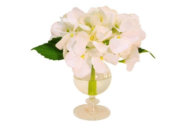 Hydrangea in Glass Urn, White