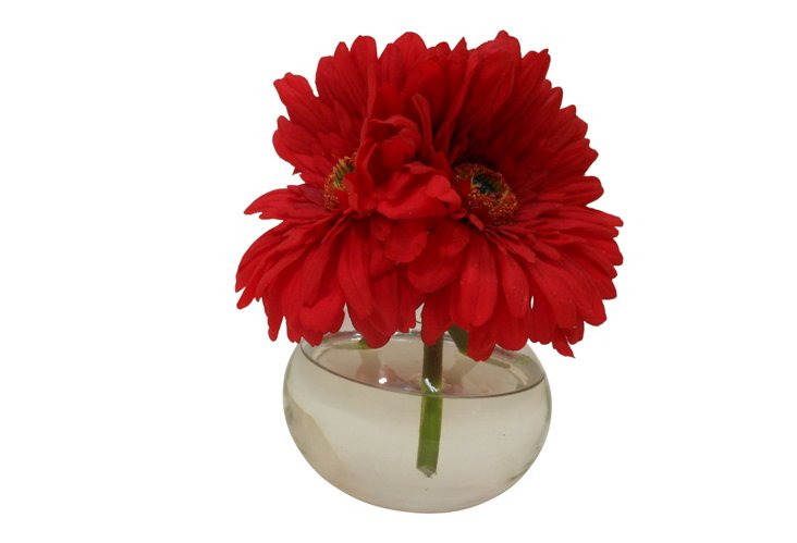 Gerber Daisies in Bubble Vase, Red