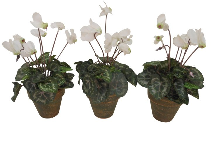 "S/3 10"" Cyclamen in Pots, Faux"