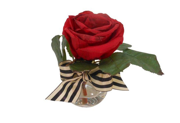 Ecuadorian Red Rose in Rim Vase