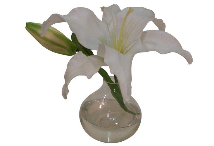 Casa Blanca Lily in Bubble Vase
