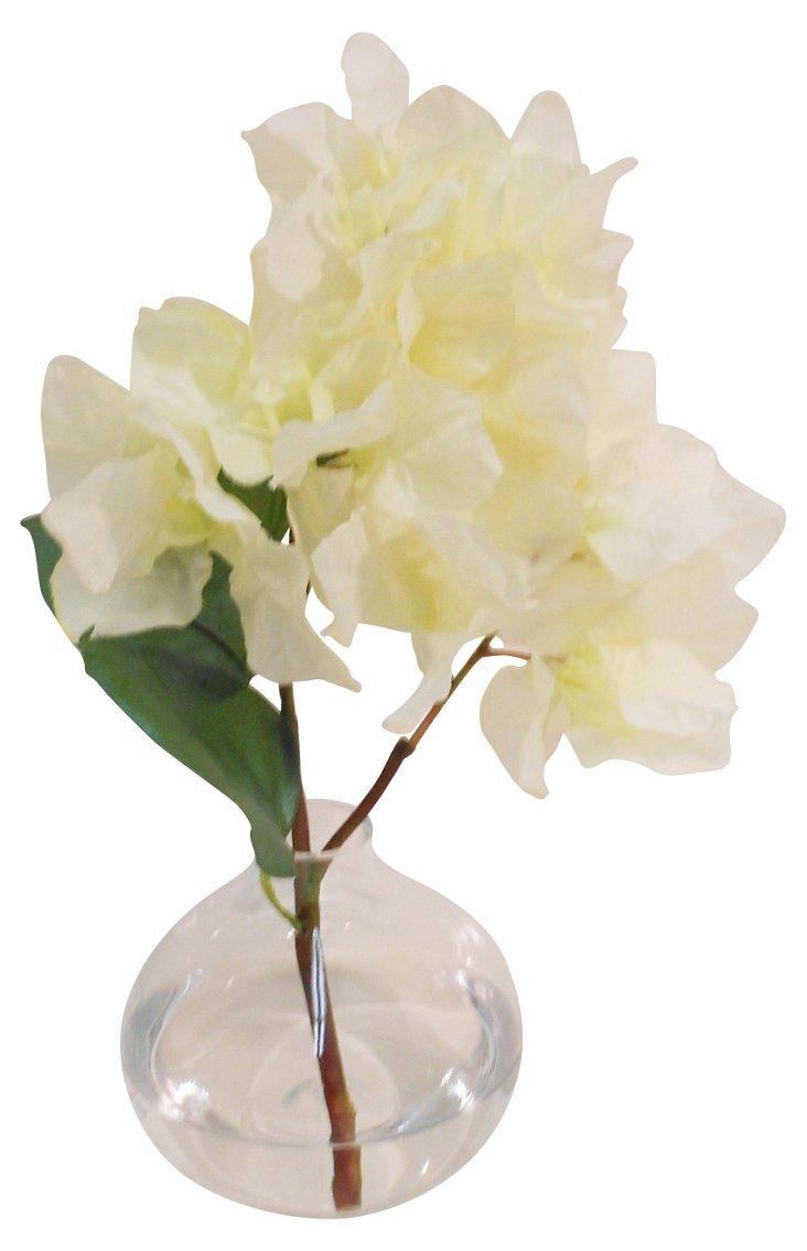 Bougainvillea in Bubble Vase, White