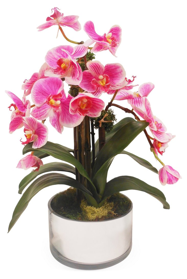 "16"" Phalaenopsis Orchid in Pot, Faux"