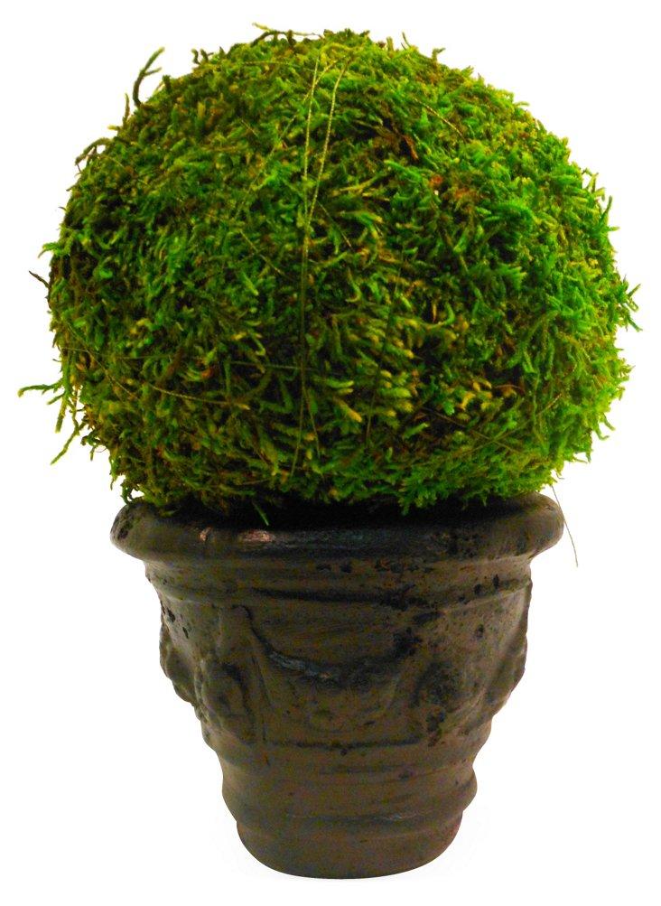"""7"""" Moss Ball in Garland Pot, Faux"""