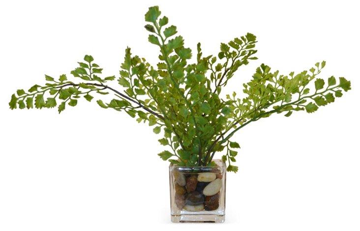 "13"" Maidenhair Fern in Cube Vase, Faux"