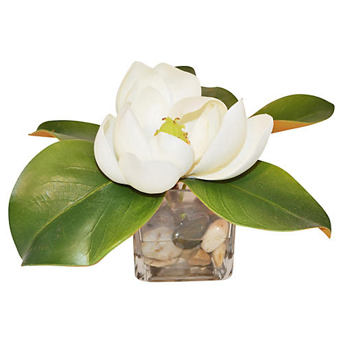 "10"" Magnolia in Cube, Faux"
