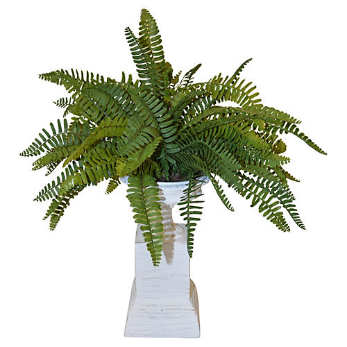 "21"" Ferns on Pedestal, Faux"