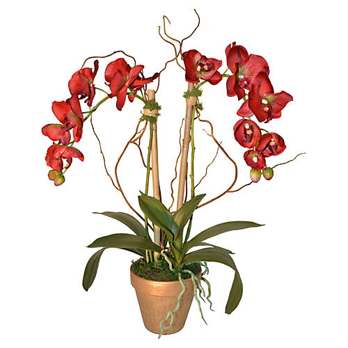 "29"" Phalaenopsis in Pot, Faux"